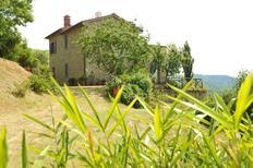 Semesterhus 1005159 för 5 personer i Cortona