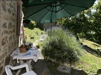 Ferienhaus 101951 für 3 Personen in Seggiano