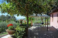 Ferienhaus 1015977 für 6 Personen in Bargecchia
