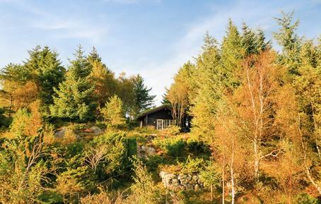 Gemütliches Ferienhaus : Region Rogaland für 4 Personen