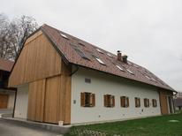 Holiday apartment 1147487 for 4 persons in Skocjan