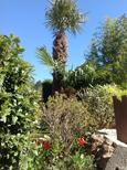 Holiday home 1154584 for 2 persons in Mimet