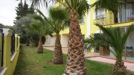 Holiday apartment 1161170 for 6 persons in Alcossebre
