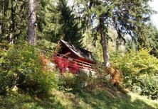 Vakantiehuis 1169480 voor 7 personen in Lind bei Scheifling