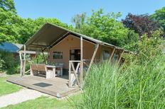 Holiday home 1176805 for 6 persons in Egmond aan den Hoef