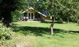Vakantiehuis 1183550 voor 4 personen in Ebeltoft