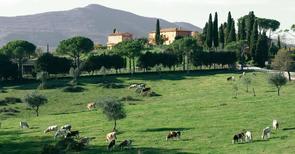 Appartement de vacances 1191036 pour 8 personnes , Citta della Pieve