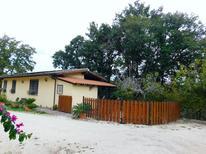 Vakantiehuis 1212825 voor 5 personen in Bottaccio