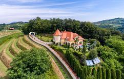 Vakantiehuis 1215804 voor 10 personen in Švaljkovec