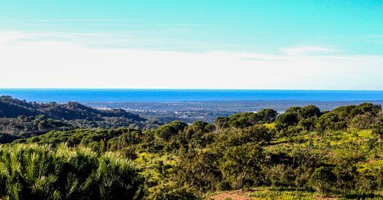 Gemütliches Ferienhaus : Region Costa do Alentejo für 14 Personen