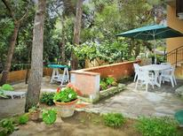 Holiday apartment 1236560 for 5 persons in Castiglioncello