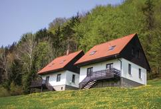 Maison de vacances 1248181 pour 8 personnes , Starkov