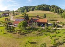 Ferienwohnung 1288603 für 4 Personen in Seebach