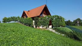 Holiday home 1296755 for 6 persons in Mirna Peč