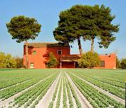Ferienhaus 1302649 für 10 Personen in Marinella di Selinunte