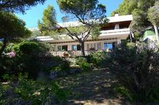 Holiday home 1306846 for 8 persons in L'Estartit