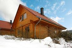 Holiday home 1308573 for 8 persons in Bad Sachsa