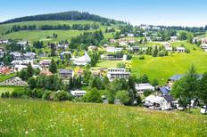 Holiday apartment 1308720 for 3 adults + 1 child in Todtnauberg