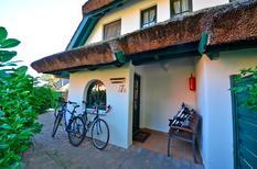 Ferienhaus 1321474 für 5 Personen in Groß Zicker