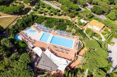 Holiday home 1322726 for 6 persons in San Vincenzo
