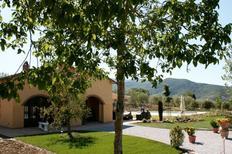 Holiday home 1324434 for 6 persons in Castiglion Fiorentino