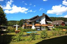 Holiday apartment 1331334 for 4 persons in Schluchsee-Blasiwald