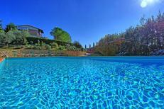 Vakantiehuis 1331518 voor 8 personen in Sciano