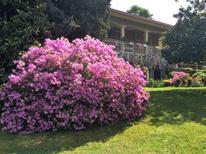 Holiday apartment 1333235 for 4 persons in Brezzo di Bedero