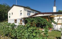 Ferienhaus 1337656 für 4 Personen in Eisenberg an der Pinka