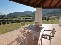 Vakantiehuis 1338214 voor 4 personen in Budoni