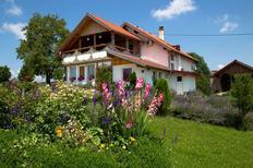 Apartamento 1347204 para 6 personas en Rakovica