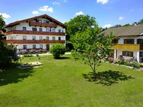 Holiday apartment 1356897 for 4 persons in Gollenshausen am Chiemsee