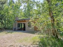 Vakantiehuis 1360122 voor 4 personen in Dwingeloo