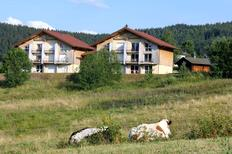Holiday apartment 1372507 for 4 persons in Xonrupt-Longemer