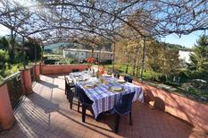 Holiday home 1374499 for 6 persons in Badia di Cantignano