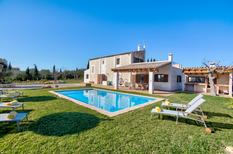 Holiday home 1380299 for 6 persons in Can Picafort