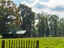 Ferienhaus 1382110 für 6 Personen in Buurse