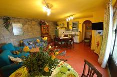 Ferienwohnung 1391063 für 6 Personen in Petrognano