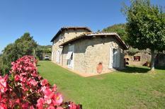 Vakantiehuis 1395016 voor 17 personen in Petrognano