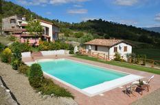 Dom wakacyjny 1395193 dla 3 osoby w Arezzo
