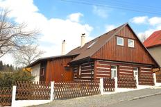 Holiday home 1398463 for 13 persons in Novy Hradek