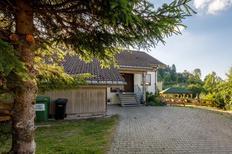 Maison de vacances 1399925 pour 20 personnes , Neuglashütten, Feldberg