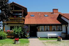 Etværelseslejlighed 1400322 til 2 personer i Höchenschwand