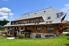 Appartement 1400478 voor 2 personen in Lenzkirch