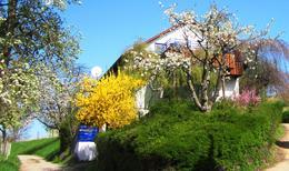 Maison de vacances 1400626 pour 6 personnes , Meersburg