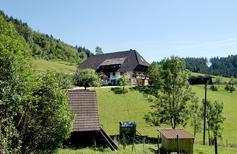 Ferienwohnung 1400866 für 4 Personen in Schenkenzell