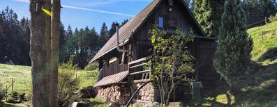 Vakantiehuis 1401504 voor 4 personen in Unterkirnach