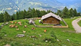 Vakantiehuis 1406729 voor 10 personen in Oberdrauburg