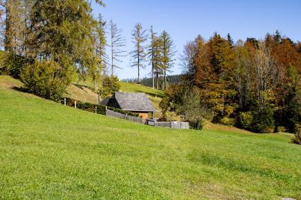 Gemütliches Ferienhaus : Region Traunsee für 2 Personen