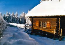 Holiday home 1406757 for 3 persons in Neukirchen